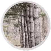 Urban Forestry Round Beach Towel