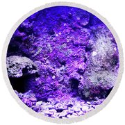 Round Beach Towel featuring the photograph Uw Coral Stone 2 by Francesca Mackenney