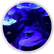 Round Beach Towel featuring the photograph Uw Neon Coral by Francesca Mackenney