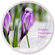 Valentines Day Crocuses Round Beach Towel