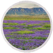 Valley Phacelia And Caliente Range Round Beach Towel