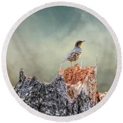 Varied Thrush On A Dead Tree Round Beach Towel