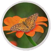 Variegated Fritillary On Flower Round Beach Towel by Ronda Ryan