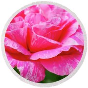 Variegated Pink And White Rose Petals Round Beach Towel by Teri Virbickis