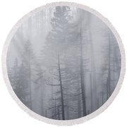 Round Beach Towel featuring the photograph Veiled In Mist by Dustin LeFevre