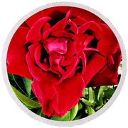 Velvet Red Rose Round Beach Towel
