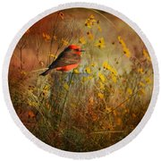 Vermilion Flycatcher At St. Marks Round Beach Towel