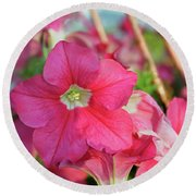 Very Pink Petunia Round Beach Towel