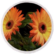 Round Beach Towel featuring the photograph Vibrant Gerbera Daisies by Terence Davis