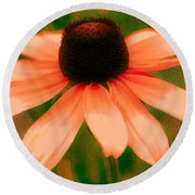 Vibrant Orange Coneflower Round Beach Towel by Judy Palkimas