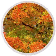 Round Beach Towel featuring the photograph Vibrant Sugar Maple by Gary Hall