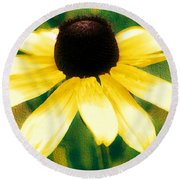 Vibrant Yellow Coneflower Round Beach Towel by Judy Palkimas