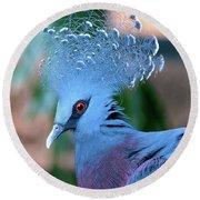Victoria Crowned Pigeon Round Beach Towel