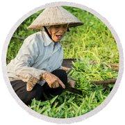 Vietnamese Woman In Rice Paddy Round Beach Towel