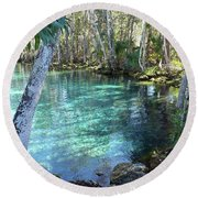 View 2 Of Spring 3 At Three Sisters Springs Round Beach Towel