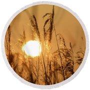View Of Sun Setting Behind Long Grass B Round Beach Towel