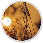 View Of Sun Setting Behind Long Grass C Round Beach Towel