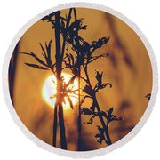 View Of Sun Setting Behind Long Grass D Round Beach Towel