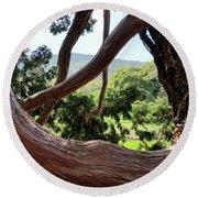 View Through The Tree Round Beach Towel by Carol Lynn Coronios