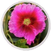 Vigenetted Hollyhock Round Beach Towel