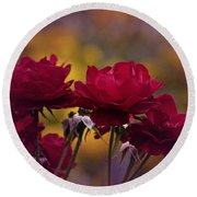 Vintage Aug Red Roses Round Beach Towel