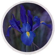 Vintage Blue Magic Iris Round Beach Towel