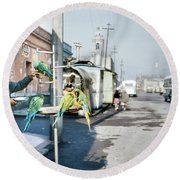 Round Beach Towel featuring the photograph Vintage Mexico City Man With Parrots by Marilyn Hunt