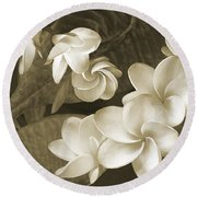 Round Beach Towel featuring the photograph Vintage Plumeria by Ben and Raisa Gertsberg