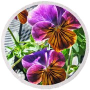 Violas Round Beach Towel