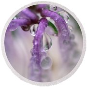 Round Beach Towel featuring the photograph Violet Mist by Susan Capuano
