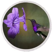 Violet Sabrewing Hummingbird Round Beach Towel