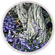 Violets At My Feet Round Beach Towel by Sarah Loft