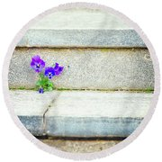Round Beach Towel featuring the photograph Violets    by Silvia Ganora