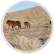 Virginia Range Mustangs Round Beach Towel