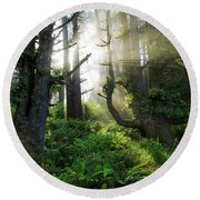 Round Beach Towel featuring the photograph Vision by Chad Dutson