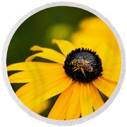Visitor In The Garden Round Beach Towel by Shelby  Young
