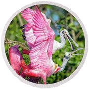 Vocal Roseate Spoonbill Mates Round Beach Towel
