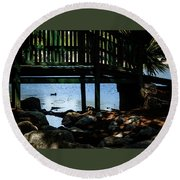 Wading In Water Round Beach Towel