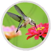 Round Beach Towel featuring the photograph Waiting In The Wings by Christina Rollo