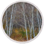 Round Beach Towel featuring the photograph Walk In The Woods by James BO Insogna
