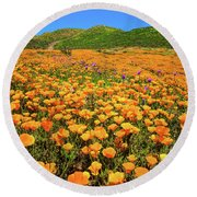 Walker Canyon Wildflowers Round Beach Towel