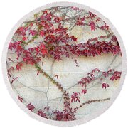 Wall Of Leaves 2 Round Beach Towel by Dubi Roman
