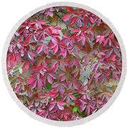 Round Beach Towel featuring the photograph Wall Of Leaves 1 by Dubi Roman