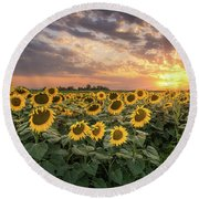Wall Of Sunflowers Round Beach Towel