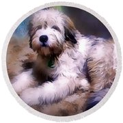 Round Beach Towel featuring the digital art Want A Best Friend by Kathy Tarochione