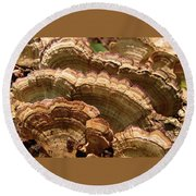 Warm Color Round Beach Towel by Betsy Zimmerli
