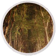 Warm French Tree Lined Country Lane Round Beach Towel