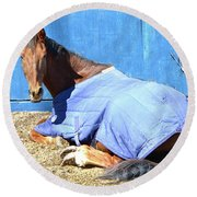 Warm Winter Day At The Horse Barn Round Beach Towel