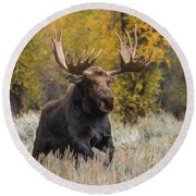 Washakie During The Rut Season Round Beach Towel by Yeates Photography
