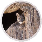 Watchful Eyes Round Beach Towel